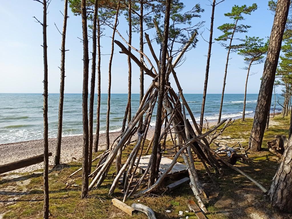 Freehiking on a Baltic Coast: Ventspilis - Klaipėda. Both Lithuanians and Latvians seems to be handy with sticks (somewhere close to Klaipėda)