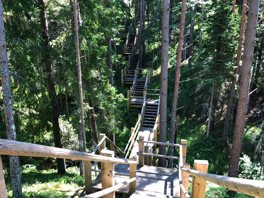 Hiking in Latvia: Pēterezers Nature Trail